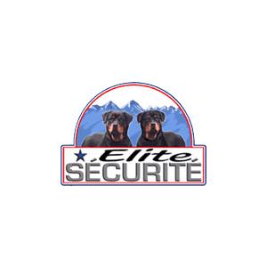 Thonon Evian Grand Genève Football Club - Elite securite