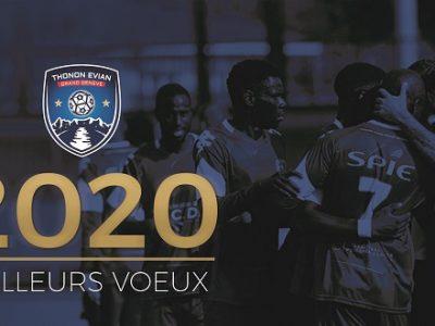 Thonon Evian Grand Genève Football Club -